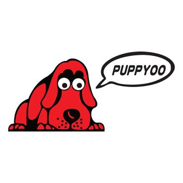 Migliori Scope Elettriche Puppyoo Recensioni E Consigli